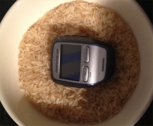 Garmin with rice.